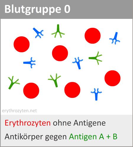 blutgruppe-0