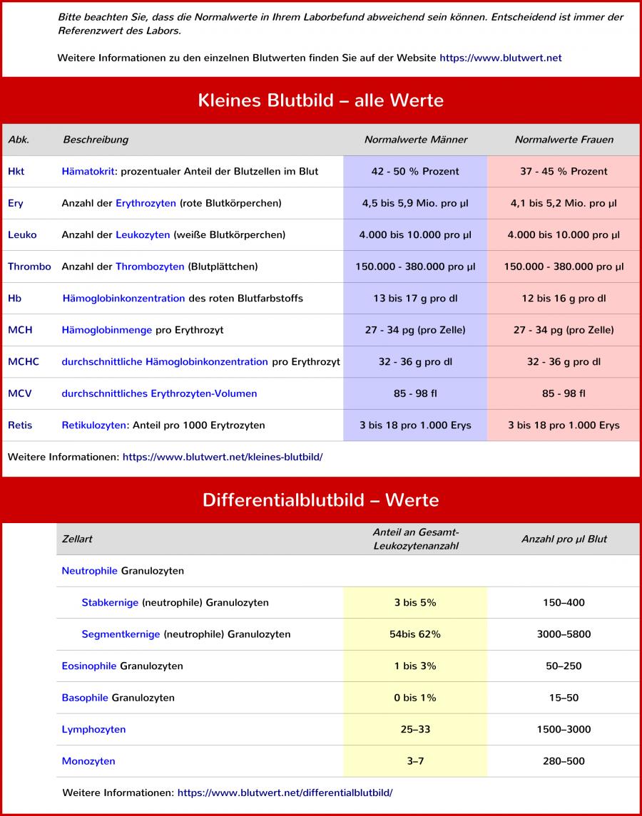 blutwerte-tabelle